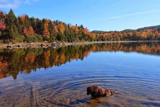 Moose Pond Maine.jpg
